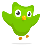 owl-happy@2x